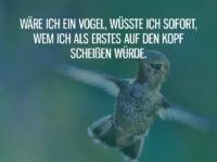 Als Vogel anderen auf den Kopf scheißen