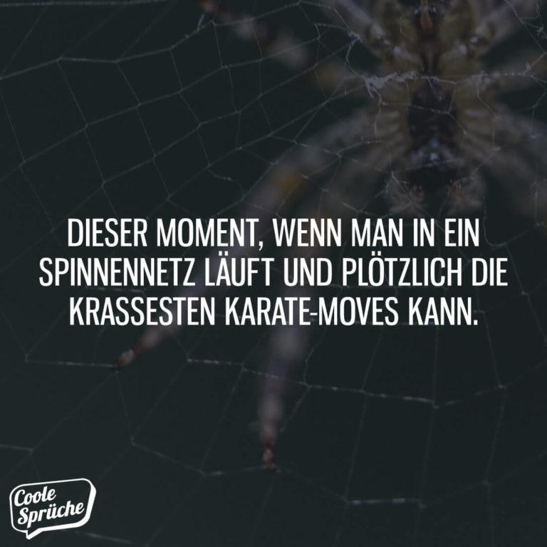 Dieser Moment, wenn man in ein Spinnennetz läuft